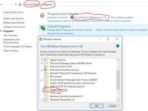 Enable Telnet on Windows