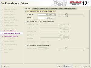 DBCA Memory Option